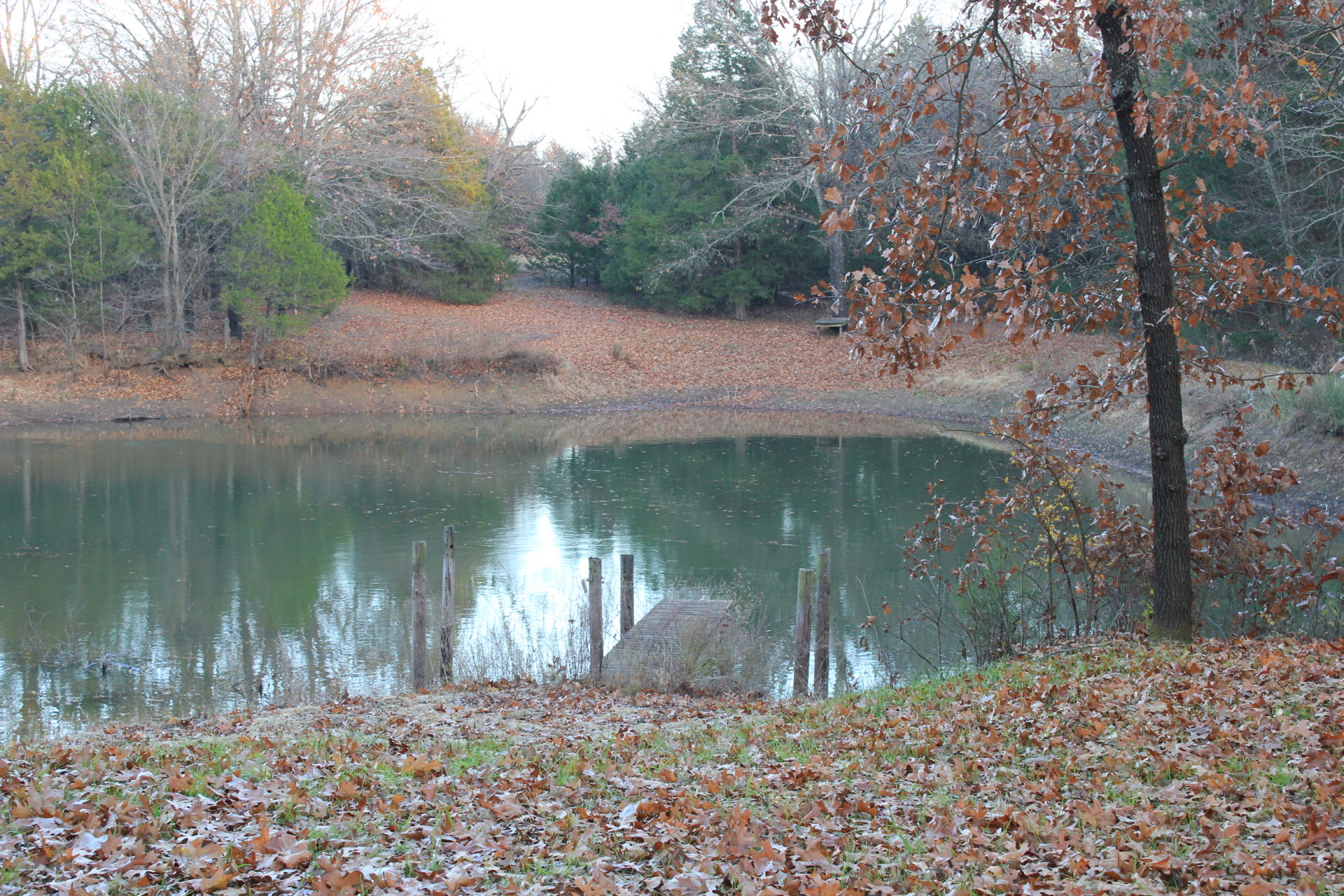 Fishing Pond